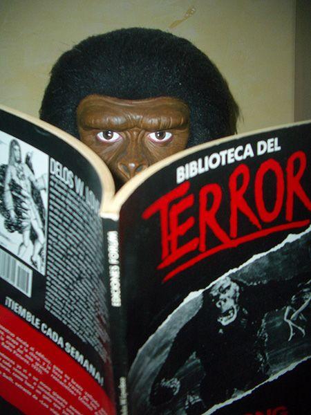 King Kong novelizado